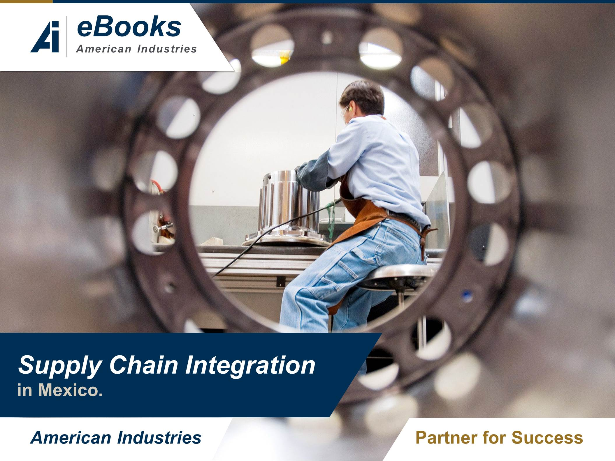 Supply Chain Integration in Mexico